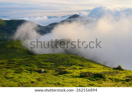 Summer landscape. Mountain peaks in the clouds. Beauty in nature. Carpathians, Ukraine, Europe - stock photo