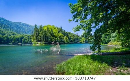 Summer landscape of mountain lake and forests of its shores. National park Biogradska mountain, Montenegro.