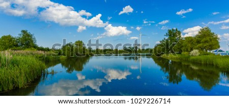 Summer landscape of park on the shore of a pond