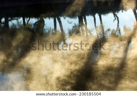 summer landscape of trees and clouds reflected in the river in the fog at dawn - stock photo