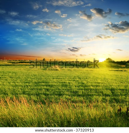 summer landscape on a background beautiful sunset - stock photo