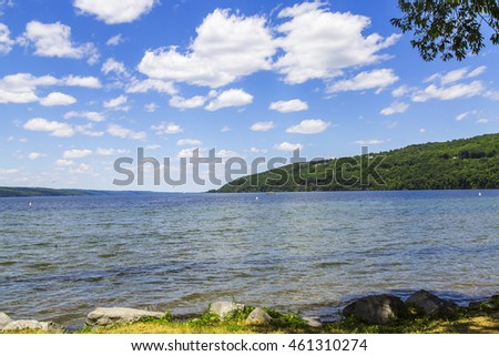 Summer landscape. Picturesque coast of the lake