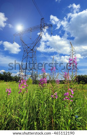 summer landscape power lines in a field near the forest