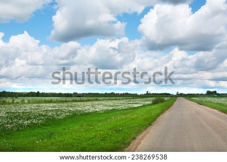 summer landscape road leading to the horizon and big white clouds in the blue sky