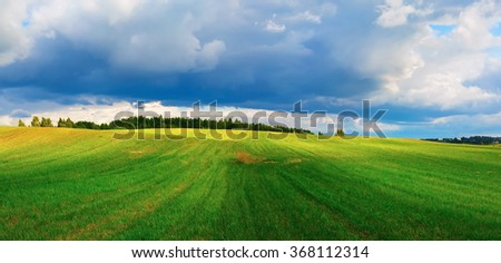Summer landscape. Sky with cumulus clouds and hilly field of green grass. Sunny day in the countryside. Panoramic shot. - stock photo