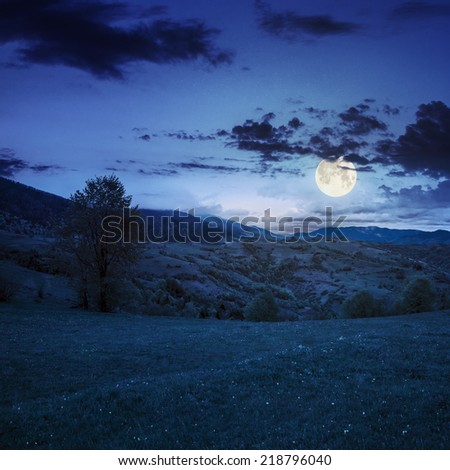 summer landscape. village near the meadow path on the hillside. forest in fog on the mountain at night in full moon light - stock photo