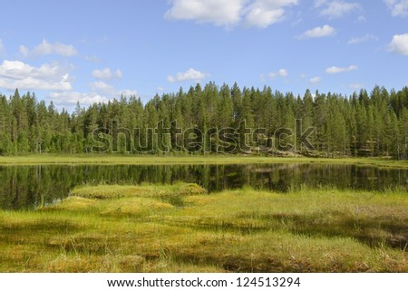 Summer landscape with a lake and swamp. Northern Finland - stock photo