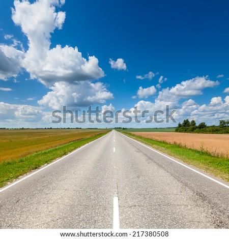 Summer landscape with asphalt road - stock photo
