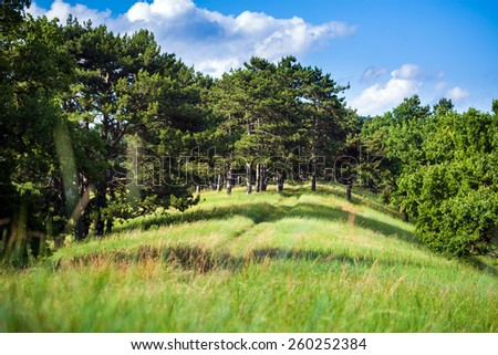 Summer landscape with clear blue sky and hill covered by trees - stock photo