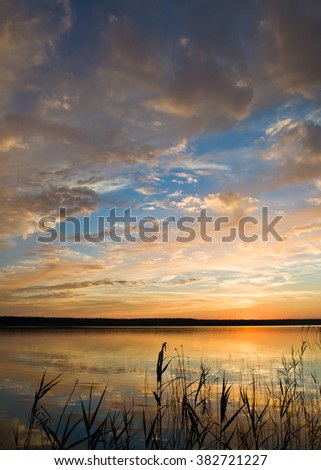 Summer landscape with colorful sunset.
