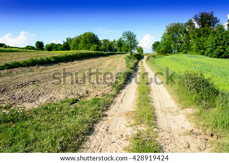 Summer landscape with dirt road and fields in Roztocze region in Poland