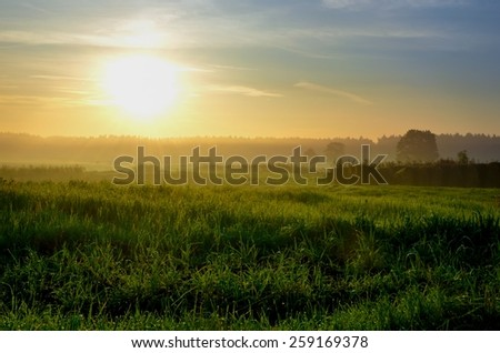 Summer Landscape with field. Green fields and haystacks during the sunset, Poland. - stock photo