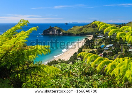Summer Landscape with Green Field and Blue Sky on the Pacific Sea Coast, Coromandel Peninsula, North Island, New Zealand - stock photo