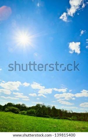 summer landscape with green field and sun