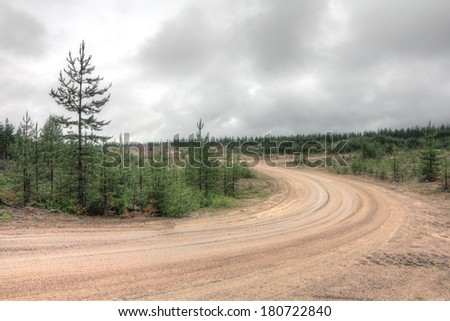 Summer landscape with green field, forest and rural road - stock photo