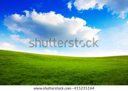 Summer landscape with green grass and blue sky. - stock photo