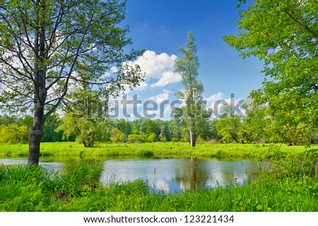 Summer landscape with lonely tree and blue sky - stock photo