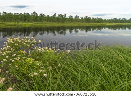 Summer landscape with river, sky, forest and  green grass