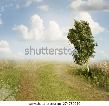 Summer Landscape With Rural Road And A Birch Tree - stock photo