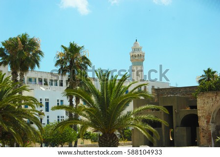 Summer landscape with trees and buildings in Tunisia