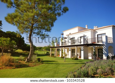 Summer landscape with white holiday villa, lawn and pine with blue sky background(Portugal) - stock photo