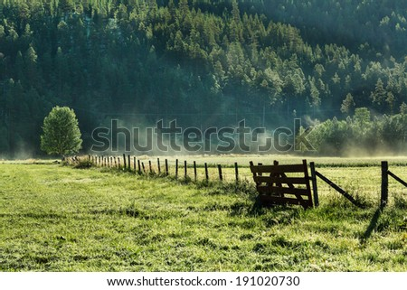 summer landscapes - stock photo