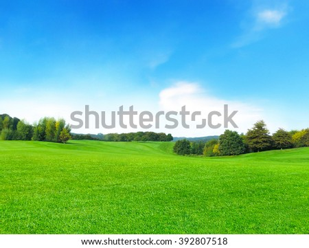summer meadow and blue sky with fluffy clouds           - stock photo