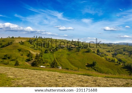 Summer Meadow in the, Carpathian, Ukraine - stock photo