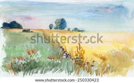 Summer morning field. Watercolor landscape