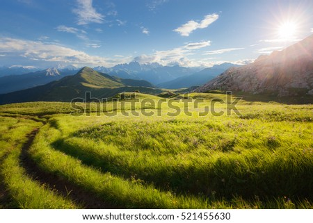 Summer mountain alpine meadow panorama. Dolomites Alps, Italy