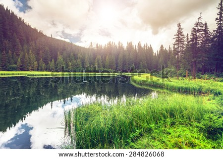 Summer mountain lake Marichejka and fir forest reflection (Ukraine, Chornogora Ridge, Carpathian Mountains) - stock photo