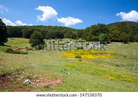 Summer mountain landscape - stock photo
