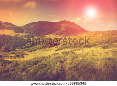 Summer mountain landscape. Fantastic evening glowing by sunlight.Hiking trail in the hills. Filtered image:cross processed vintage effect.  - stock photo
