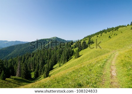 Summer mountain ridge - National park Greater Fatra - Slovakia/Europe