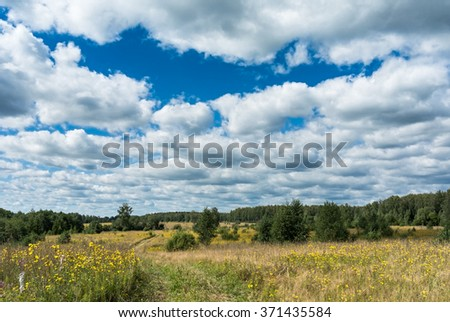 Summer natural agricultural field landscape: beautiful meadow with country road and yellow wildflowers under summer blue sky with white clouds under bright summer sunlight landscape - stock photo