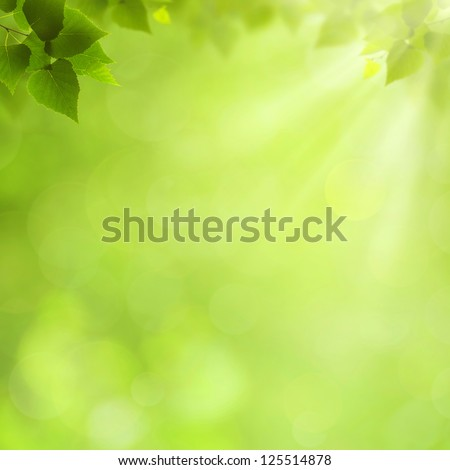 Summer natural backgrounds for your design - stock photo