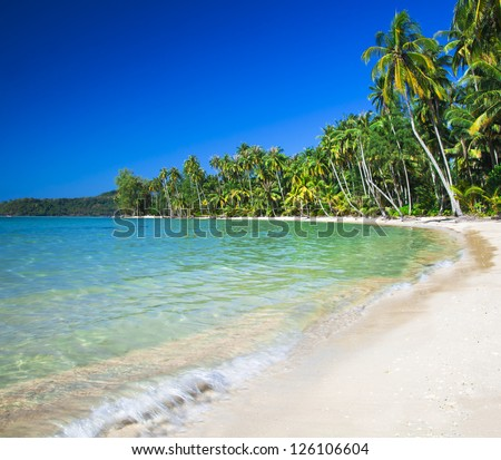Summer nature scene. Tropical beach with sea wave on the sand and palm trees - stock photo
