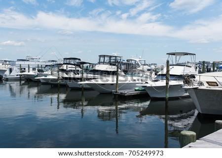 Long Beach Island New Jersey Fishing Charter