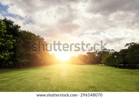 summer of Green field,flare - stock photo
