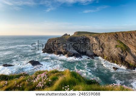 Summer on the north Cornwall coast near Longcarrow Cove - stock photo