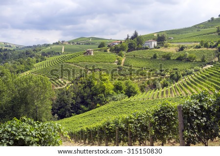 Summer panorama of the hilly region of the Langhe (Piedmont, Northern Italy) full of vineyards of the famous wine â??Baroloâ?. - stock photo