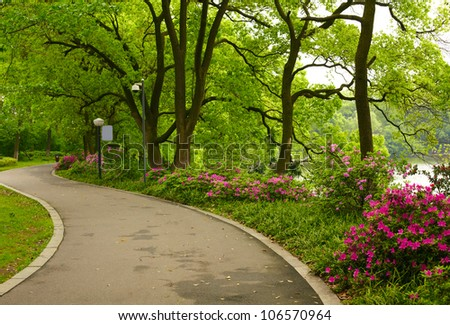 Summer park road - stock photo