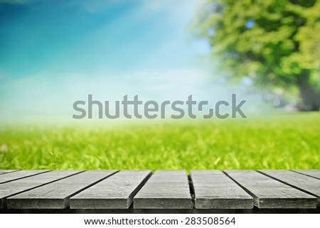 Summer picnic on nature, side view - stock photo