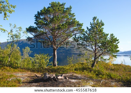 Summer picture of norwegian fjord with water and beach pebbles, Norway, Lofoten Islands - stock photo