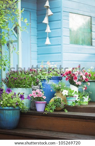Summer potted flowers and garden shed - stock photo