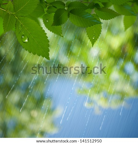 Summer Rain. Abstract environmental backgrounds for your design - stock photo