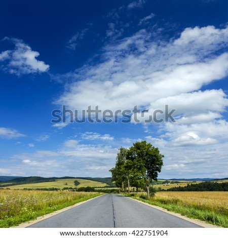 Summer road landscape/Summer road landscape