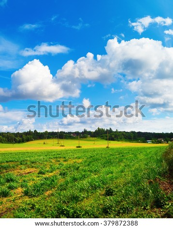 Summer rural landscape. Blue sky with clouds and field of green grass. Sunny day in the countryside. - stock photo