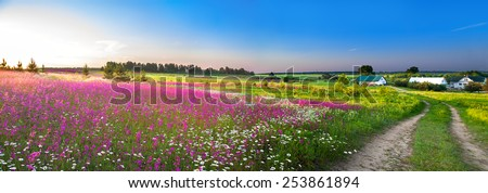 summer rural landscape panorama with a blossoming meadow, the road and a farm - stock photo