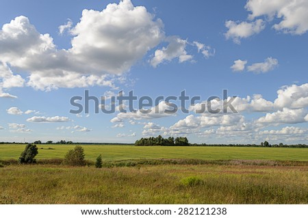 Summer rural landscape with green meadow and forest on the horizon, white clouds in blue sky - stock photo